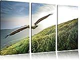 Majestic Bald Eagle 3 pezzi picture tela 120x80 immagine sulla tela, XXL enormi immagini completamente Pagina con la barella, stampe d'arte sul murale cornice gänstiger come la pittura o un dipinto ad olio, non un manifesto o un banner,