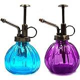 2 Pcs Botella de Spray de Riego de Vidrio,6.3 Pulgadas Tall Vintage Regadera pequeña botella de...