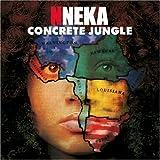 Songtexte von Nneka - Concrete Jungle