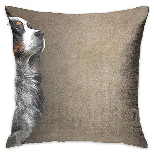 FPDecor Funda de Almohada, Throw Pillow Cover Bernese Mountain Dog Decorative Pillow Case Decor Square...