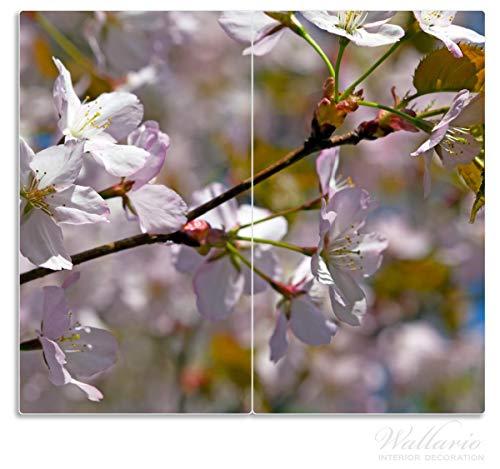Wallario Herdabdeckplatte/Spritzschutz aus Glas, 2-teilig, 60x52cm, für Ceran- und Induktionsherde, Kirschblüten in zartem Rosa - Frühling im Garten -