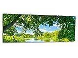 Glasbilder Echtglas Wandbilder Foto auf Glas Frühling Natur 125 x 50cm AG312502147/Deco Glass, Design & Handmade/Eyecatcher, Kunstdruck!