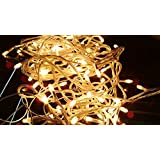 WebelKart Decorative YELLOW COLOR Rice LED Lights, 15 Metre Long (Pack Of 1)