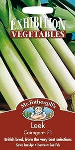 Mr. Fothergill's 23262 Lauch / Porree, 50 Samen