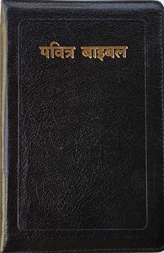 HINDI-O.V. Re-edited Zip BIBLE