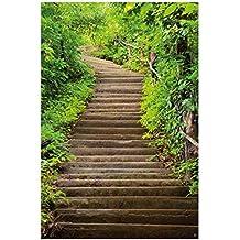 Suchergebnis Auf Amazonde Für Steintreppe Garten