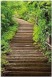 Wallario Garten-Poster Outdoor-Poster - Steintreppe im Wald in Premiumqualität, Größe: 61 x 91,5 cm, für den Außeneinsatz geeignet