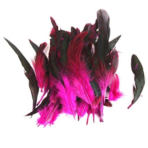 Grosshandel 50 Schoene Hahnenfedern 12-18cm / 4-7inch Rote (Kostüme Großhandel Zubehör)