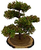 #6: Thefancymart Artificial Bonsai Green Tree plant (size 11.5 inchs/28 cms) in Natural Wood - 1169