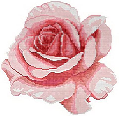 14 count aida needlepoint cross stitch rose flower kit with colorful chart HG034