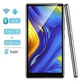 AGPTEK 16Go MP4 Bluetooth WiFi 5 Pouces Ecran Tactile Complet, Haut-Parleur Lecteur Musique Audio HiFi avec Radio FM Extensible jusqu'à 128Go, Haut MP3 Baladeur Support Type-C et Android-T03S Noir