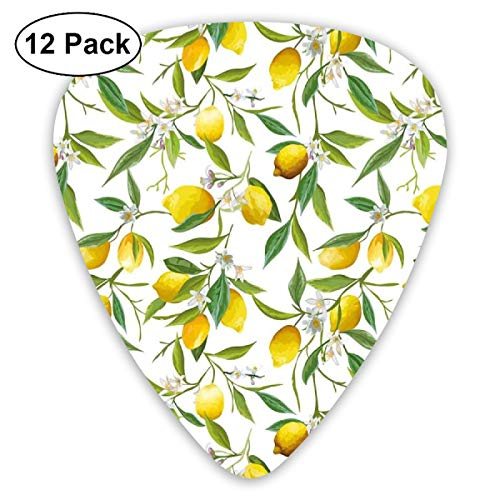 Guitar Picks - Abstract Art Colorful Designs,Flowering Lemon Woody Plant Romance Habitat Citrus Fresh Background,Unique Guitar Gift,For Bass Electric & Acoustic Guitars-12 Pack -