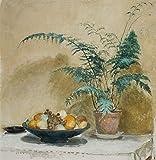 Das Museum Outlet–Teller mit Obst und Farn–Leinwanddruck Online kaufen (152,4x 203,2cm)