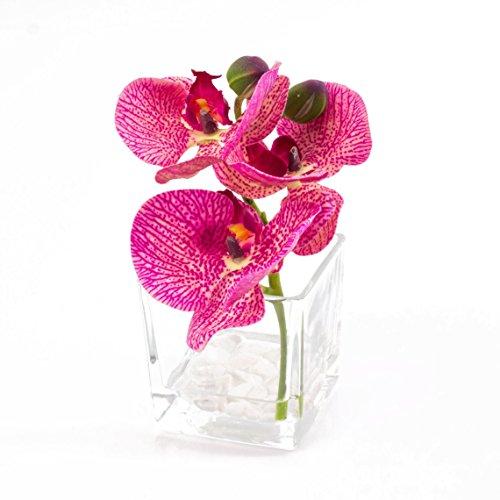 Künstliche Orchidee Phalaenopsis im Glas, pink-creme gesprenkelt, 15cm, Ø15cm - Deko Kunstblume -...