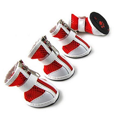 ranphy-petit-chien-chaussures-pour-male-femelle-couleur-unie-en-maille-respirante-chaussure-reglable
