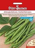 Bohnen - StangenBohnen - Neckarkönigin von Dürr-Samen