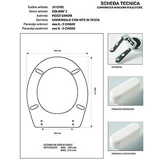 Toilet Pozzi Ginori Colibri '2White Zip cromo-sedile-asse Toilet