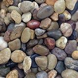 Kieselsteine Verzierungen 1–2cm/2kg Boden Aquarium Teich Garten
