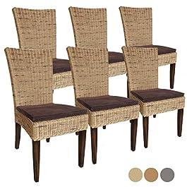Casamia Cardine Lot de 6 chaises de Salle à Manger en rotin avec Coussin de siège Base Taille Unique