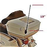 Harley Davidson Motorrad Antenne Audio AM/FM 19