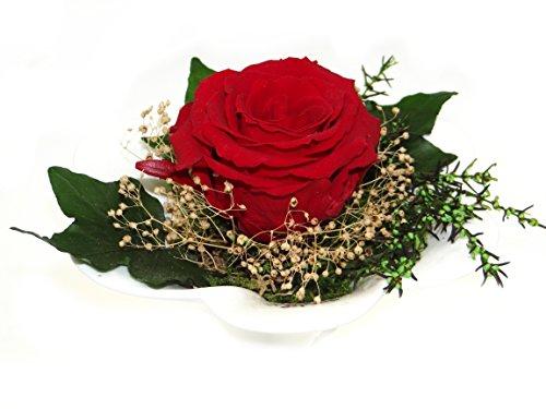 konservierte-rose-in-rot-blumen-gesteck-aus-einer-haltbaren-rose-enthalt-eine-echte-premium-rose-uns