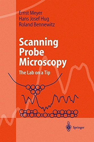 Scanning Probe Microscopy: The Lab on a Tip (Advanced Texts in Physics) (English Edition)