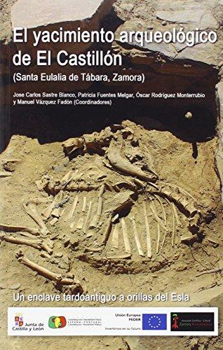 El yacimiento arqueológico de El Castillón (Santa Eulalia de Tábara, Zamora): Un enclave tardoantiguo a orillas del Esla