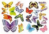 dekodino Wandtattoo Kinderzimmer Wandsticker Set A Schmetterlinge Bunte Vielfalt Stück z