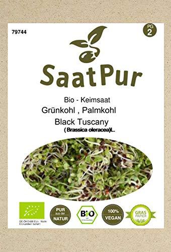 SaatPur Bio Keimsprossen - Keimsaat für Grünkohl Sprossen, Microgreens - 20g