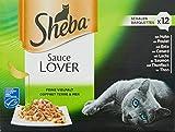 Katzen Nassfutter Test Sheba