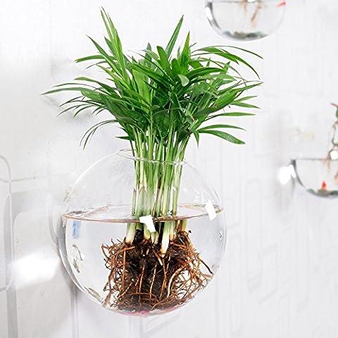 Mkono in vetro da appendere vaso fiori vaso Bubble contenitore acqua vaso - Deco Storage Box