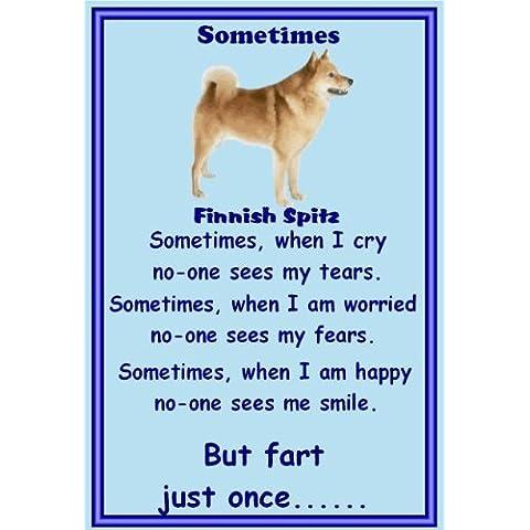 Spitz finlandese–Magneti da frigorifero, cane Sometimes