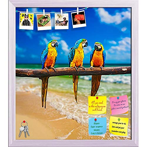 Artzfolio Parrots On Beach Printed Bulletin Board Notice Pin Board | White Frame 12 X 13.5Inch White Beach Portrait