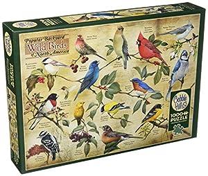 Cobblehill 80024 - 1000 pájaros Naturales Populares Puzzle, Varios