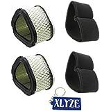 Xlyze filtre à air en mousse préfiltre Lotmusic pour 253t 12083051208308Cv11–Cv1611–16HP moteurs Lesco 050585
