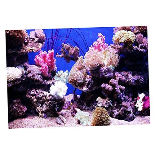 Baoblaze Aquarium Fisch Tank Hintergrund Selbstklebend Aufkleber - Korallen S