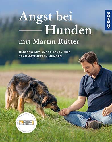 Angst bei Hunden: Umgang mit ängstlichen und traumatisierten Hunden