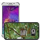 Bild Hart Handy Schwarz Schutz Case Cover Schale Etui // M00135502 Nistkasten Vogelhaus Birds Baum // Samsung Galaxy S6 EDGE (Not Fits S6)
