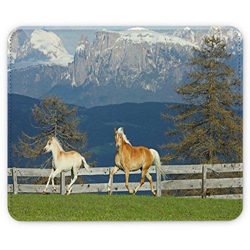 Preisvergleich Produktbild Pferde 10006,  Pferde im Feld