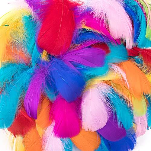 Vidillo piume colorate, 300 pezzi bella di alta qualita' del piuma, sicuri e non tossici e non sbiadiscono, per le feste di compleanno e matrimonio, diy dream catchers orecchini craft centrotavola