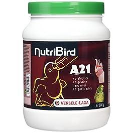 Nobby Nutribird A21