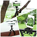 Ailun Phone Camera Tripod Mount/Stand,Compact Phone Holder,Compatible with Camera Galaxy note10,s8/s9/s10/s10plus/s7/s7 Edge,Note8/9,Note5 More Camera&Cellphone[Black]