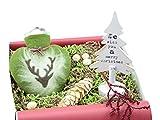 ideas in boxes Geschenkset - warme Wintertage mit Wärmflasche in Herzform (Elch) und Deko Tannenbaum