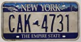 USA Nummernschild NEW YORK ~ US Kennzeichen EMPIRE STATE ~ Blechschild Skyline Motiv