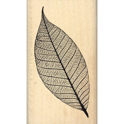 florileges-design-fd214045-lightweight-leaf-scrapbooking-stamp-beige-7-x-4-x-25-cm