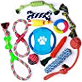 Parner Dog Rope Toys, 12pcs Puppy Chew Set Toy Durable Teeth Cleaning for Small Medium Large Dog Cotton Squeak Interactive Toys