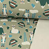 Sweatshirt Stoff Winterlama grau - Preis Gilt für 0,5