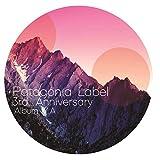 Patagonia Label Varios Artistas, Vol. 3
