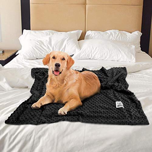Zoom IMG-1 allisandro coperta nera per cani
