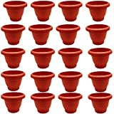 ONBN Plastic Flower Pot for Garden for Balcony, Garden, Living Room, 6 Inches (Terracotta) - Set of 20